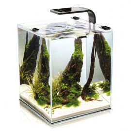 Acvariu AQUAEL Shrimp Smart 20 25x25x30cm
